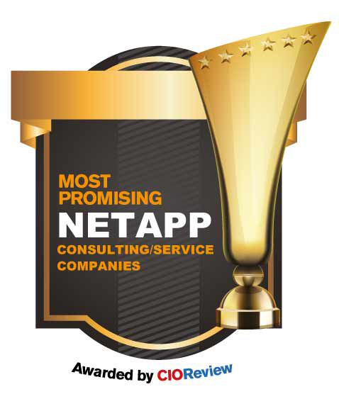 Top Netapp Consulting/Services Companies