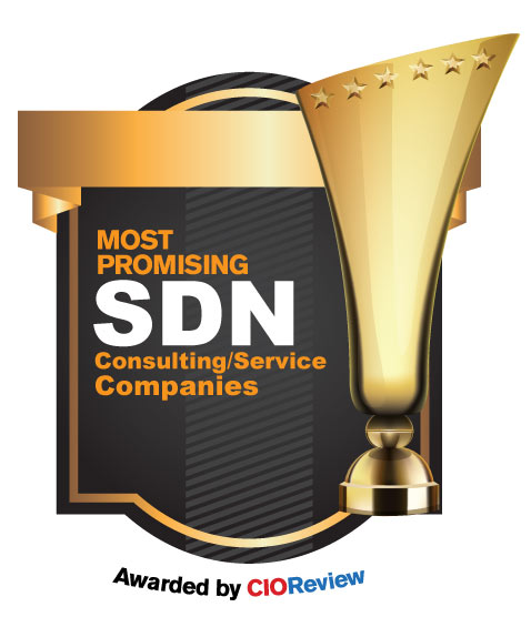 Top SDN Consulting/Service Companies