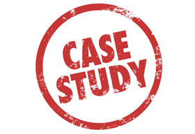 Clarkston Consulting Case Study