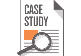 BrainSINS Case Study