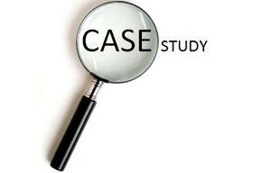 Mintigo Case Study