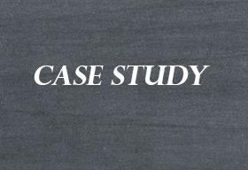 Theobald Software GmbH Case Study