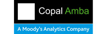 Copal Amba: Provider Of Customized High-End Research And Analytics