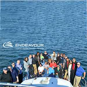 Endeavour Solutions: A Safe Haven for Dynamics GP Users Seeking Options
