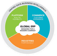 ERP Experts: Unleashing the Power of NetSuite