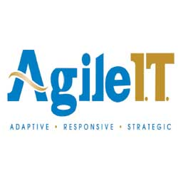 Agile IT: Helping Companies to Achieve Substantial Improvements in Their IT Environment