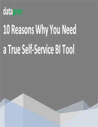 10 Reasons Why You Need a True Self-Service BI Tool