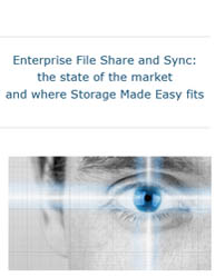 Enterprise File Share and Sync: The State of the Market and Where Storage Made Easy Fits