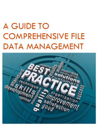 A Guide to Comprehensive File Data Management: Everything You Need to Succeed