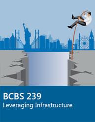 BCBS 239 Leveraging Infrastructure