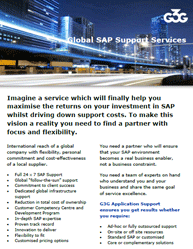 G3G Global SAP Support Services