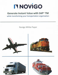 Generate Instant Value With SAP Transport Management System (SAP TMS)
