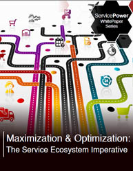 Maximization & Optimization: The Service Ecosystem Imperative