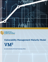 Vulnerability Management Maturity Level Control Security Risk Attacks and Data Breaches