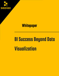 Business Intelligence Success Beyond Data Visualization
