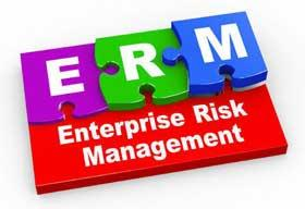 Is it Mandatory to Adopt Cyber Risk Management in Organizations?