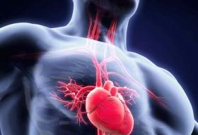 Bolstering the Structural Heart Paradigm