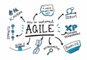 Have Organizations Gone Fully Agile?