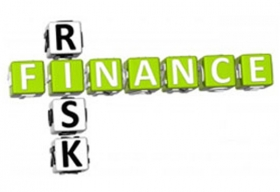 Financial Risk Management by IFAC and ERM