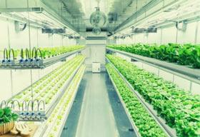 What are the Significant Agtech Trends to Look Forward to?