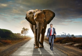 Teradata and MapR Collaborate to Promote Big Data, Hadoop So