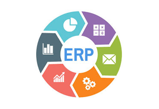 Integrating DLT and ERP for Innovative Solutions