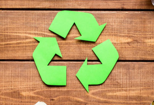 Go Green with these Simple Measures, Enhancing Sustainability