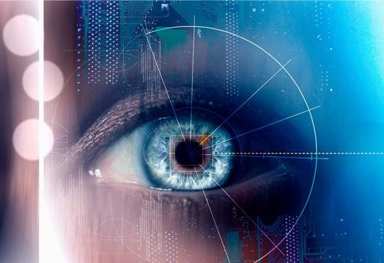 Using Biometry to Enhance IT Security from UBIN AG