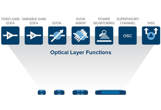 Customizable Service Enhancing IP and Optical Layer Efficiency