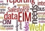 3 Tips for Enterprises While Adopting EIM Managed Services