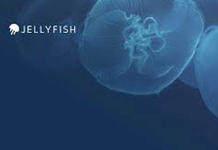 Jellyfish Secures $31.5 Million in Series B Funding