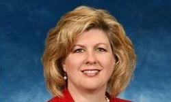 Sheryl Fikse Bunton, CIO & VP, AGCO