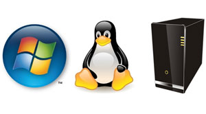 an analysis of the server shootout between linux and windows nt Windows 2003 vs linux file server benchmarks nt vs linux web  carry out a comparison between nt and linux  on windows nt server vs linux.